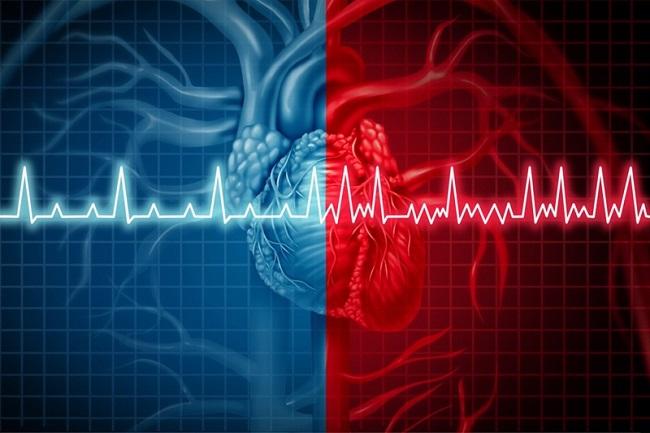 Nhịp mạch bình thường là bao nhiêu?