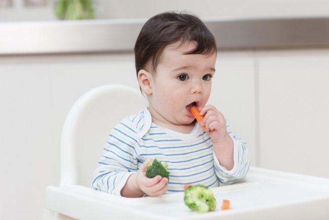 Trẻ 6 Tháng ăn được Những Gì1